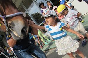 ばんえい競馬のお馬さん